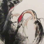 Cranes by Kace Montgomery