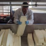 Cheese being made